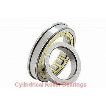 2.953 Inch | 75 Millimeter x 6.299 Inch | 160 Millimeter x 2.165 Inch | 55 Millimeter  SKF NJ 2315 ECML/C3  Cylindrical Roller Bearings